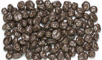 Chocolade Rozijnen Puur